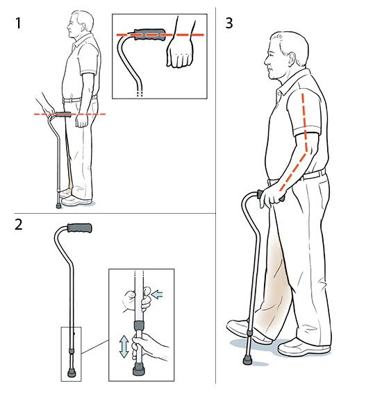 3 steps in fitting a cane.